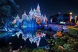 LFNSTXT Rompecabezas para adultos, 1000 piezas, de Estados Unidos, Disneyland Parks Castles Pond Bridges para adultos, familias y niños. Juguete educativo para decoración del hogar (70 x 50 cm)