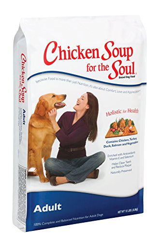 chicken soup for the soul health - 9