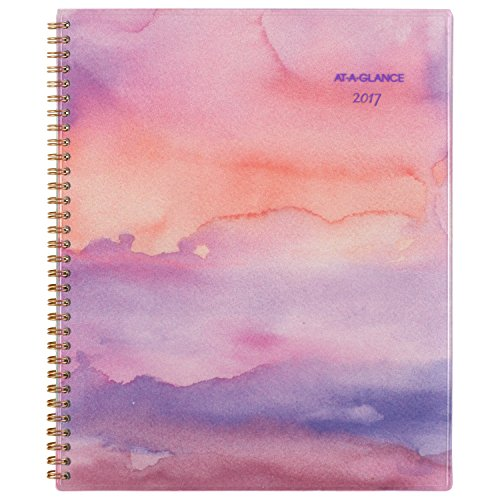 """AT-A-GLANCE Weekly / Monthly Planner / Appointment Book 2017, 8-1/2 x 11"""", Paradise Punch (119-905)"""