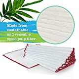 Simply Natural Wood Fiber Cloth, 12 Pack Antibacterial Dish Cloths, Odor Free Dish Washing Towels, (10'x10') Reusable Cleaning Cloths - Red Color