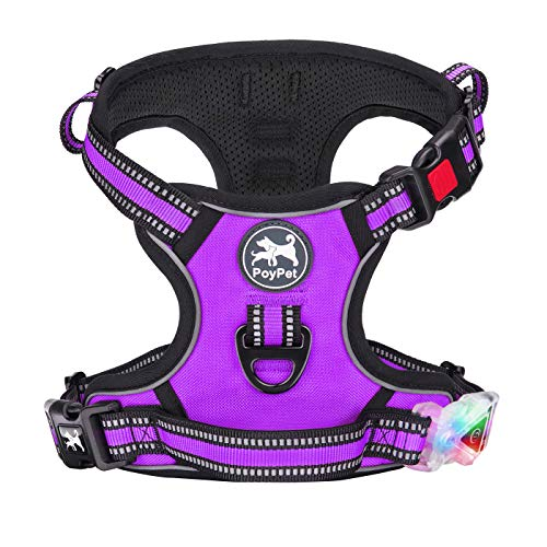 PoyPet LED Flashing Light No Pull Dog Harness Reflective Pet Vest for Dogs with Easy Control Handle 3 Buckles Perfect for Daily Training,Walking Running (Purple,L)