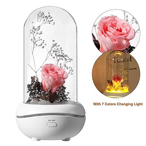 Etherische olie Diffuser Enchanted Rose in een glazen koepel voor altijd Bewaarde nooit verwelkte roos Aroma Diffusers LED Sfeer Bottle lamp Beauty,Pink