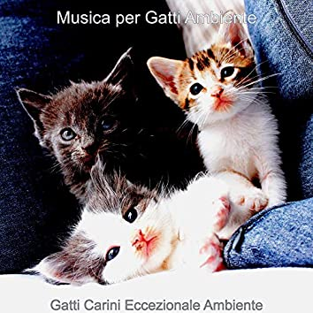 Gatti Carini Eccezionale Ambiente