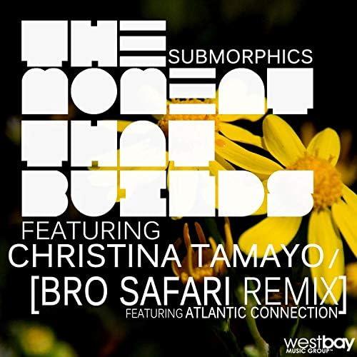 Submorphics