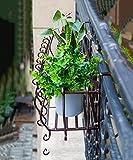 Flores Escaleras Soporte de flores de hierro espesado Soporte de flores de varios pisos de pared de pared colgante Balaustres de balcón Soporte de flores colgantes