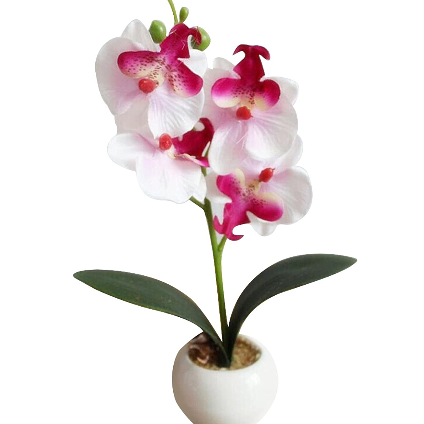 WskLinft Four Head Butterfly Orchid Meaty Plant Bonsai Artificial Flower Home Decoration - White