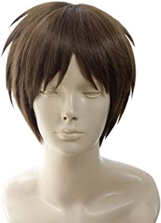 Yesui Short Men Cosplay Wigs Brown Straight Hair Wig for Boy Halloween Costumes Party Anime 12 inch
