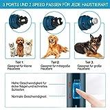 Zoom IMG-1 kastewill affilacoltelli per cani e