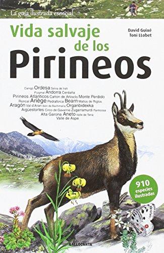 Vida Salvaje de Los Pirineos: 2 (La guia essencial)