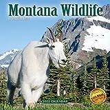2022 Montana Wildlife Wall Calendar