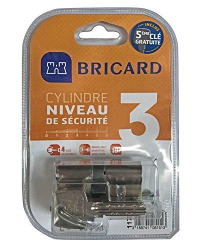 Bricard 11734 Cylindre Débrayable 5 clés Astral 2,9 en Laiton 10 Pistons, 2 entrées 30+40, Protection Contre Le perçage et Le crochetage. Carte personnelle, Acier Nickelé, 70