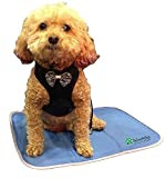 The Green Pet Shop Dog Cooling Mat - Pressure-Activated Gel Cooling Mat For Dogs, Small Size - This Pet Cooling Mat Keeps Dogs and Cats Comfortable All Summer - Ideal for Home and Travel