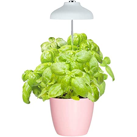 GrowLED LED Umbrella Plant Grow Light, Herb Garden, Height Adjustable, Automatic Timer, 5V Low Safe Voltage, Ideal for Plant Grow Novice Or Enthusiasts, Various Plants, DIY Decoration, White