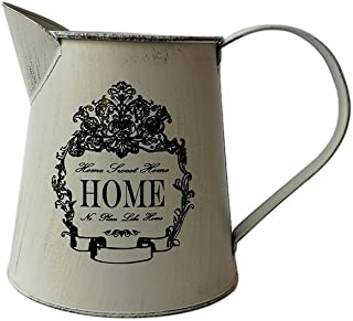 SHDAO Small French Style Country Primitive Jug Vase Watering Can Metal Jugs Pitcher Office Home Bar Cafe Decoration
