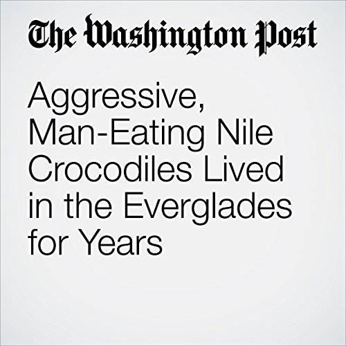 Aggressive, Man-Eating Nile Crocodiles Lived in the Everglades for Years audiobook cover art