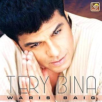 Tery Bina - Single