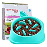 FIETING Slow Feeder Dog Bowls, Fun Feeder Sol Bowl, Maze Interactive Dog Puzzle Non Skid Stop Dog Food Bowls. Eco-Friendly Non Toxic Healthy Design Dog Bowl for Large Medium Small Dogs.
