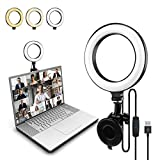 Gepege Video Conference Lighting, Light for Video Conferencing, Ring Light for Computer, Laptop Light for Remote Working/Zoom Call/Livestreaming/Selfies/Online Make-up/Webcasting