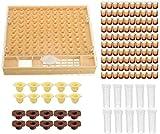 Vzer, kit completo per apicoltura, cupularve, sistema per la cattura, l'allevamento, per allevare api regina
