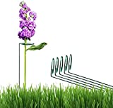 greenpeas Plant Stake Support - 5 pk - 32 Inch, Garden Single Stem Support Stake Plant Cage Support Rings, Single Stem Plant Support Stakes, Stakes for Flowers Amaryllis Tomatoes Peony Lily Rose