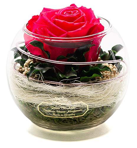 Rosen-Te-Amo – Konservierte Premium pink Rose in Kugel Vase - Blumenstrauß im Glas mit Liebe handgefertigt aus 100% echte Deko-Pflanzen; Infinity Deko-Blumen: 3 Jahre haltbar ohne Wasser