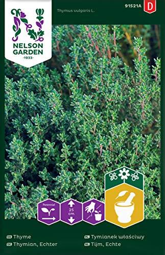 Echter Thymian Samen - Nelson Garden Küchenkräuter - Thymian Kräutersamen (800 Stück) (Einzelpackung)