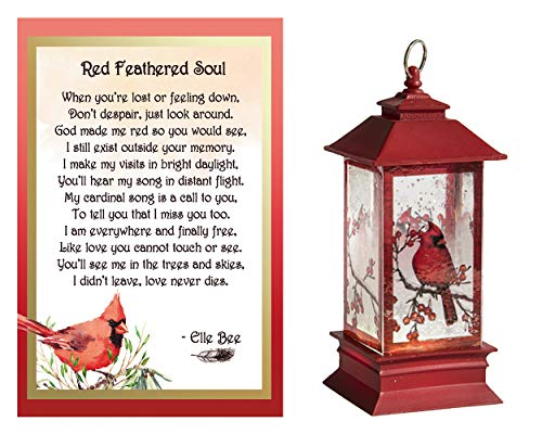 Lola Bella Gifts and Ganz Cardinal Memorial Lantern Mini Shimmer Night Light and Red Feathered Soul Poem Card Box Sympathy Grief Gift