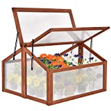 COSTWAY Outdoor Wooden Greenhouse, Plant Flower Vegetable Cold Frame Transparent Protection for Garden Balcony Backyard