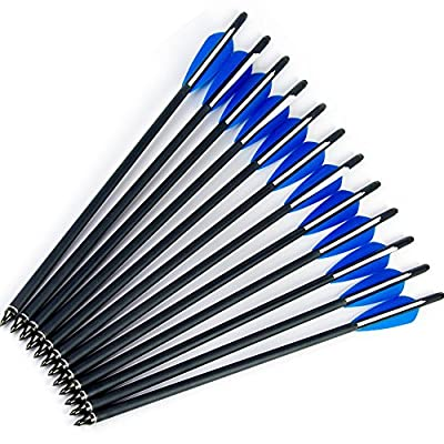 12pk Carbon Arrows Crossbow Bolts with Half Moon Nock and Aluminum Pin 100 Grain Screw-In Points