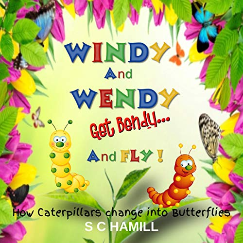 Windy and Wendy Get Bendy...and Fly...! audiobook cover art