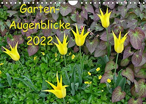 Garten-Augenblicke (Wandkalender 2022 DIN A4 quer)