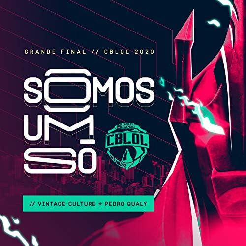 Pedro Qualy & League of Legends Brasil feat. Vintage Culture