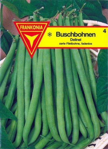 Frankonia 4 Buschbohnen Delinel, Samen