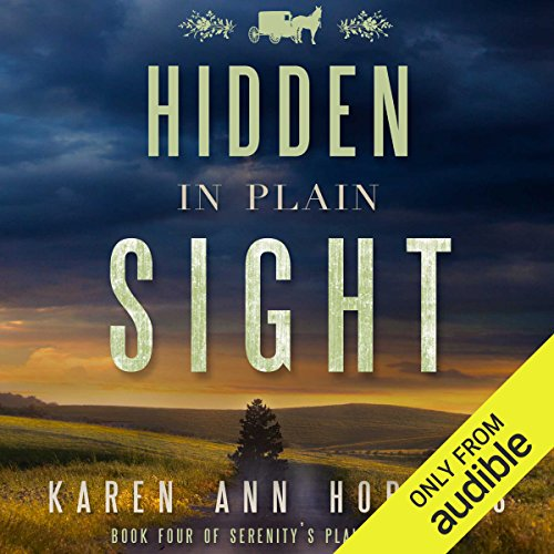 Hidden in Plain Sight Titelbild