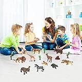 Beebeerun Toy animali per bambini 18 PZ realistico Animali Figure Set giocattoli per 2