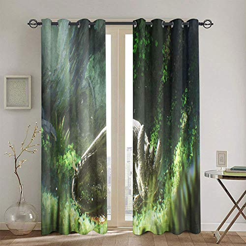 Cortinas de oscurecimiento de habitación para dormitorio Cómo entrenar a tu dragón, cortinas aisladas para sala de estar, 2 paneles de 183 x 160 cm