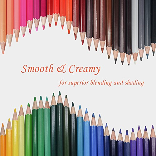 Scriptract Adult Colouring Pencils, 48 Coloured Pencil Set with Roll Up Canvas Pencil Wrap Sharpener Eraser, Best Gift for Artists, Kids, Sketchers, Students Drawing (Set of 48)