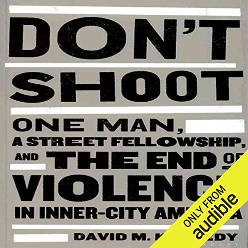 Don't Shoot audiobook cover art