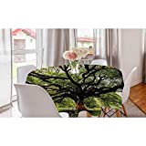 Round Table Cloth The Largest Monkey Pod Tree in Thailand Eastern Green Big Branches Growth Eco Photo Decorative Solid Table Cover Elegant Beauty for Everyday Use Green Brown (Diameter36 Inch)