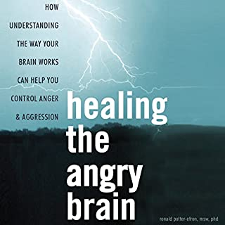 Healing the Angry Brain audiobook cover art