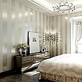 Qihang Papel tapiz moderno minimalista, no tejido, rayas verticales, para sala, color crema y plateado 0.53 m de ancho x 10 m de largo = 5.3 m²
