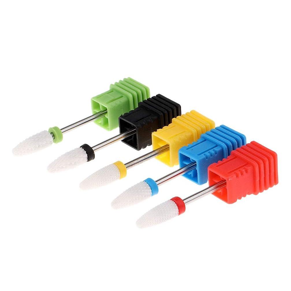 特異な直面する天気FLAMEER ネイルドリルビット 爪やすり 電気ネイルドリル マニキュアツール 耐摩耗性
