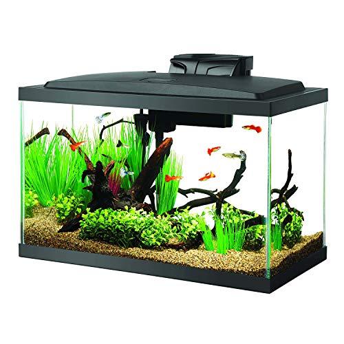 Aqueon Aquarium Starter Kit with LED Lighting 10