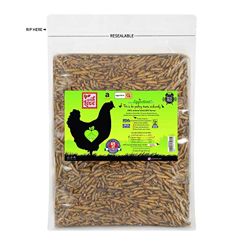 Eggcellent Update 2.2Lbs 95% More Calcium Than Mealworms, Non-GMO High Protein Natural Dried Black Soldier Fly Larvae for Wild Birds, Chickens, 35 Ounce