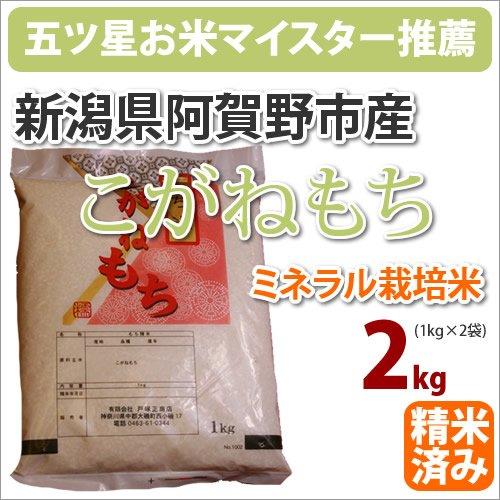 2年産 新潟県阿賀野市産ミネラル栽培米「こがねもち」2kg