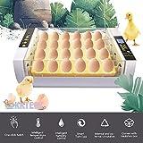 KKTECT Incubadora de 24 Huevos Incubadora Automática Integrada Incubadora Termostática Incubadora casera de Aves de Corral de Laboratorio Pollo Pato Ganso Ave Huevo Incubadora
