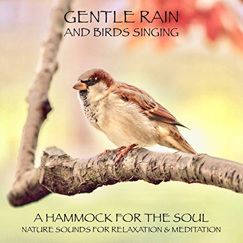 Gentle rain and birds singing - a hammock for the soul audiobook cover art