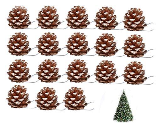 JOSE9A Weihnachten Tannenzapfen Pinus Nigra Schwarzkiefern Zapfen Kiefernzapfen Tannen Zapfen Naturzapfen Thanksgiving Und Weihnachtsbaum Dekoration