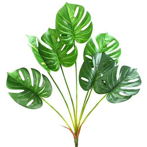 planta monstera de la marca Aobear