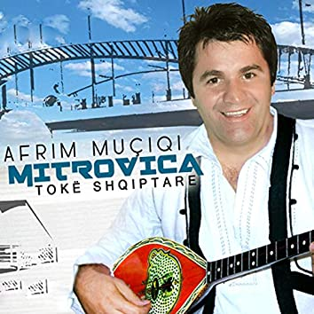 Kushtuar Mitrovices
